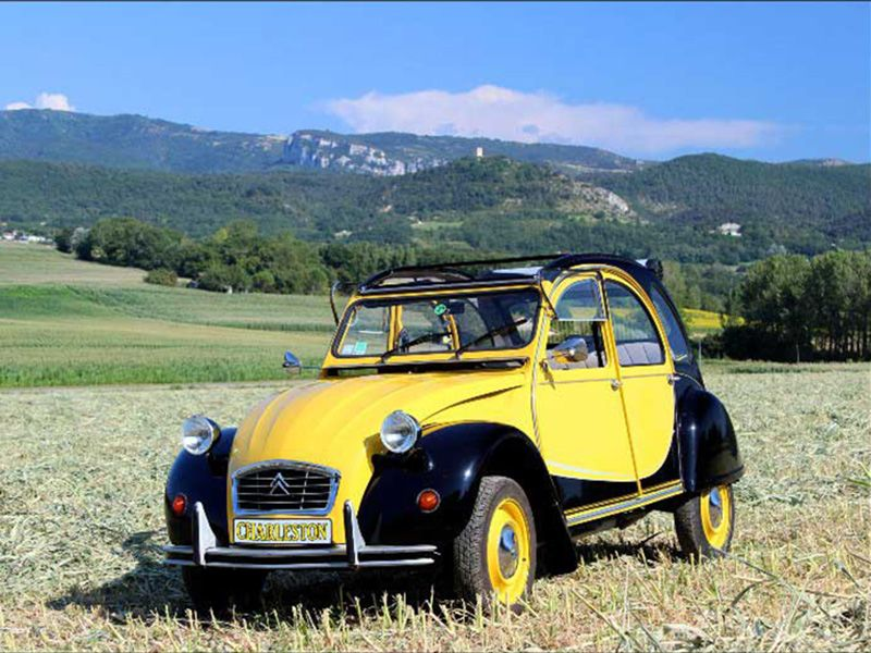 2cv charleston jaune et noir archives